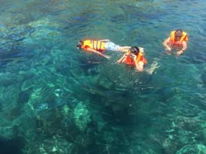 Ngắm san hô bãi Dứa